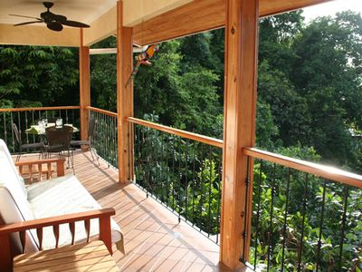 The balcony is a perfect perspective over the rainforest canopy.