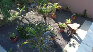 Puntarenas City estate photo - Peaceful Garden