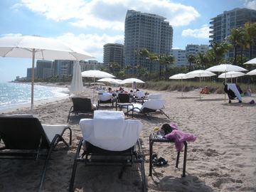 Beach area with chairs and umbrellas. Free towel service and catering