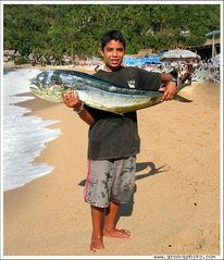 Puerto Vallarta condo photo - Enjoy fishing!!!
