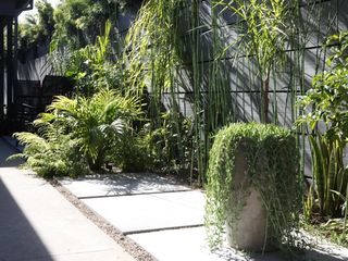 Venice Beach apartment photo - Courtyard Garden