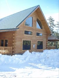 Alpine cabin rental - Beautiful Ponderosa pine are just outside your door.