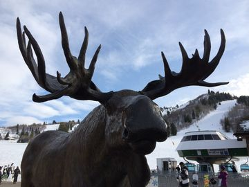 Snowbasin townhome rental - Got Moose?