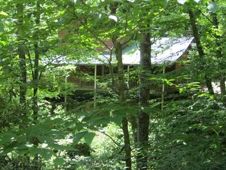 Maggie Valley cabin photo - Cabin is in a cove-like setting, no neighbors, traffic or noise!