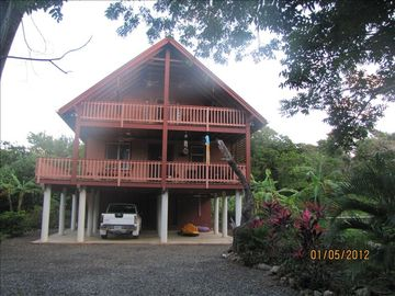 Roatan house rental - completely surrounded by palm, coconut and banana trees,