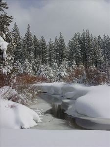 View of the creek in the backyard meadow in the snow