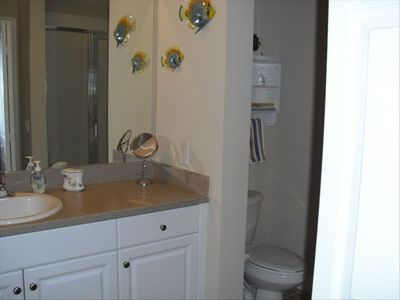 Master bath includes walk in shower and walk in closet.