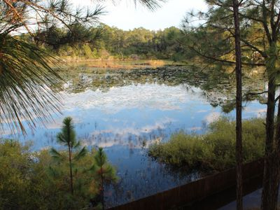 The pond/wetland reflecting the clouds. This view from the upstairs back deck.