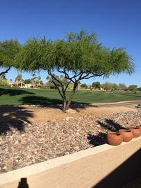 Rio Verde house rental - Golf course view from veranda (also from master bedroom!)