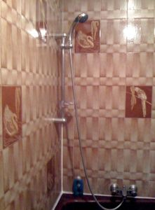 tub/shower (shower curtain not in photo, but it's there :-)