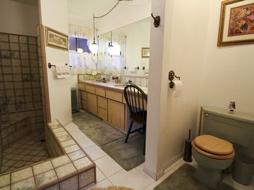 Master bathroom--lower level. Sunken tub with shower, double sinks