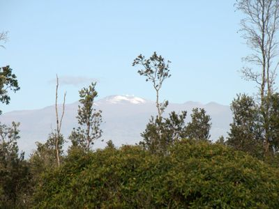 Mauna Kea with snow, taken from front of property.