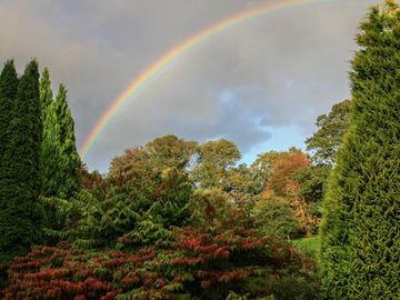 Rainbow over Lush Autumn Gardens