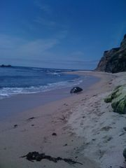 Half Moon Bay estate photo - Beach that is 5 minute walk from the property