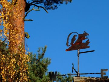 Woodsides red squirrel weather vane