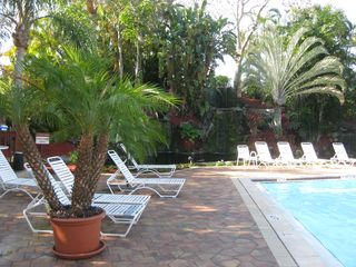 Naples condo photo - Poolside with waterfall