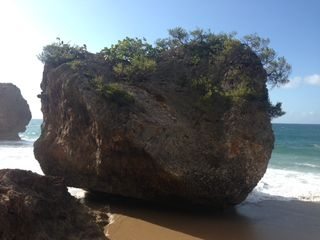 Isabela apartment photo - Incredible Rock formations on our beach!
