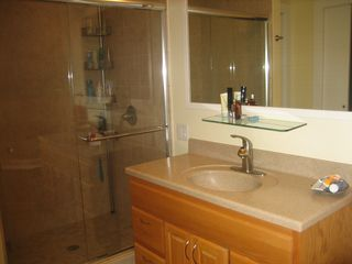 New Buffalo house photo - Master bathroom