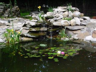 Bushkill chalet photo - pond and waterfall