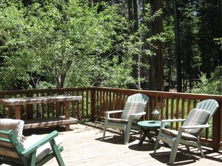 Homewood cabin photo - Sunny back deck