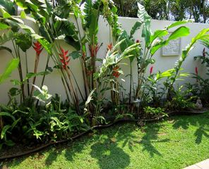 Kihei cottage photo - Cottage garden