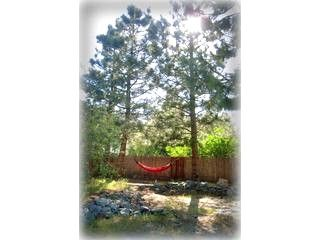 Wrightwood cabin photo - The backyard of the Hideaway in the summertime. Wrightwood cabin vacation rental