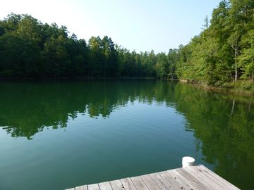 Lake Martin house rental - View of cove from fishing dock, wildlife watching.