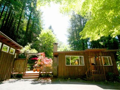 Stunning Cottage in the Forest! Hot Tub,Hammock, Outdoor Shower, Huge Deck!