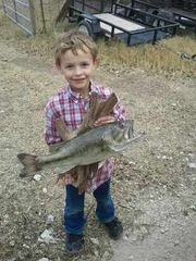Horseshoe Bay house photo - Bass caught at our house!