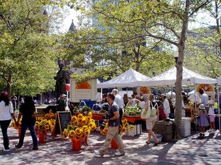 Boston apartment photo - Copley Square Farmers Market