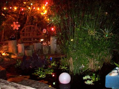 Tropical Koi Fish Pond (Nite Time View)--A Magical Relaxing Evening Awaits!!