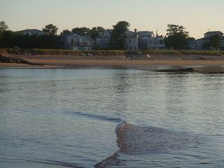 Biddeford cottage photo - View of our beach looking back from the sandbar.