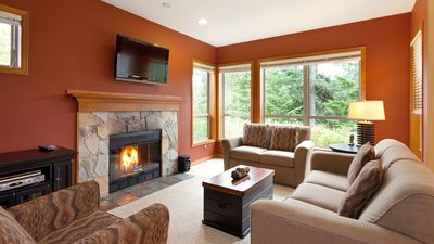 Comfortable Living Room with Presto Log Fireplace and Forested V