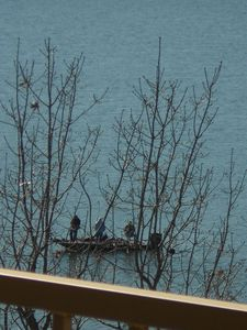 Hollister condo rental - Fishing is popular at Table Rock Lake. This photo was taken from our balcony.