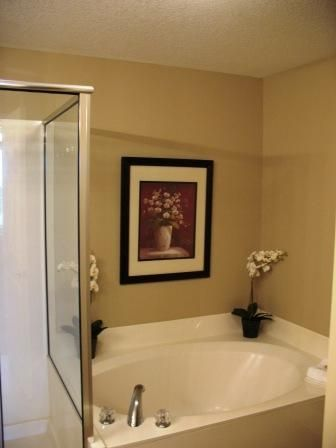 Master Bath with large tub and seperate shower.
