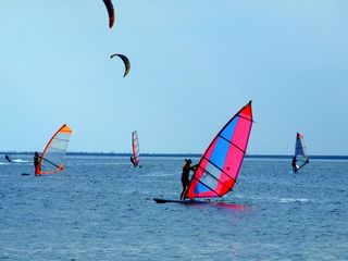 Hyannis - Hyannisport house photo - Try your hand at windsurfing @ nearby Kalmus Beach