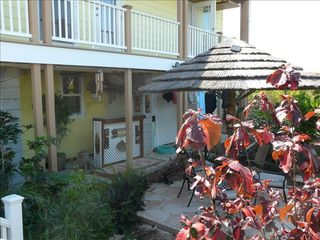 Elbow Cay and Hope Town house photo - Tropical gardens with Tiki Bar