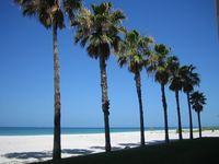 You're Right on the Beach at the Beachcomber Condo, Longboat Key - Unit 301
