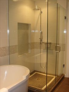 Master Bedroom En-Suite Shower and Soaker Tub