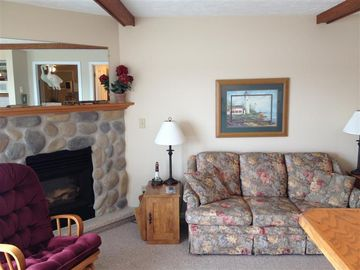 Gas fireplace, pull out couch