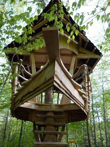 Our amazing treehouse is accessible to adventurers of all ages!