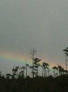 Beautiful Florida rainbow.