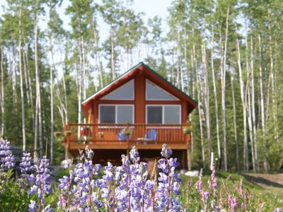 Front view of Kenny Lake Chalet with Lupine blooming and whispering Aspens