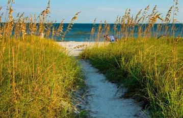 Beach path from condo