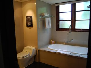 Nusa Dua apartment photo - Second bathroom