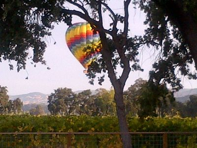 early morning balloon from back yard