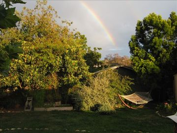 Beautiful, lush backyard with rainbow!