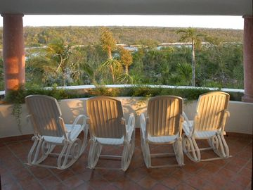 Verandah view: perfect for tea or bird watching