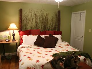 Robbinsville house photo - Become one with the Nature Room...King bed on first floor with full bath.