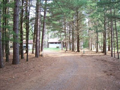 Long driveway through the pines